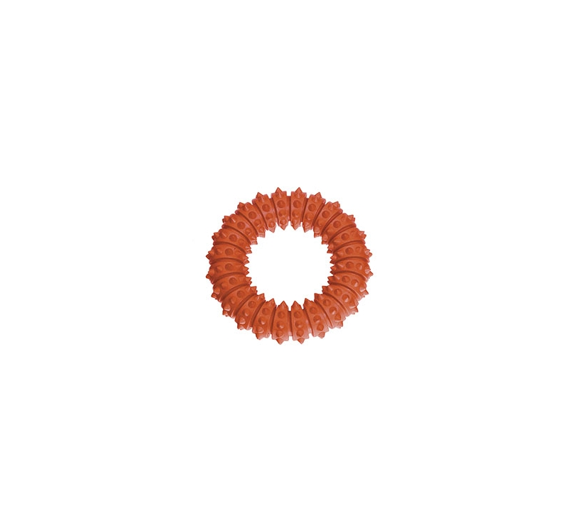 Ruffus Aqua Ring 15cm