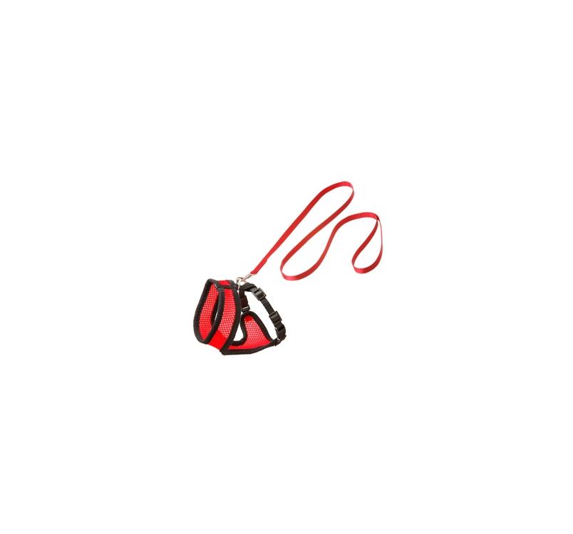 Traksid Kassipojale Punane/Must S 32-41cm + Jalutusrihm 110cm