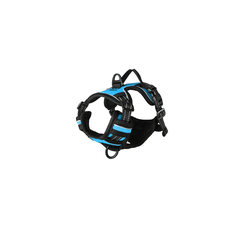 Harness Balou Blue S 40-55cm x 20mm