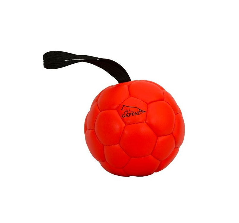 Gappay Leather Training Ball 16cm