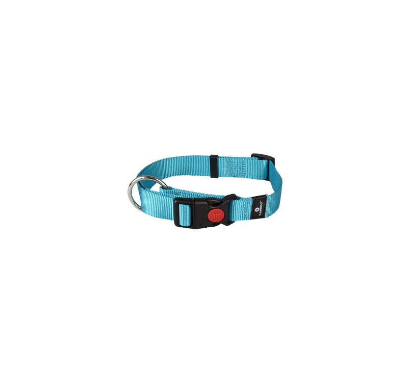 Collar Nylon Turqoise 45-65cm 25mm