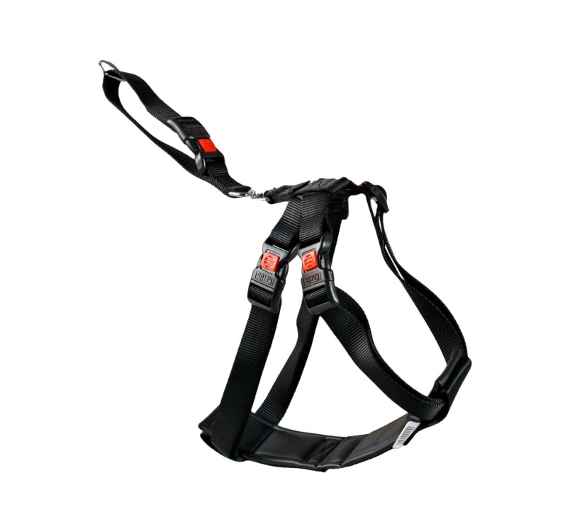 Car Safety Harness S 35-50cm