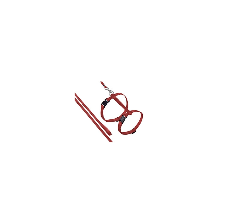 Traksid Kassile Punane 20-35cm + Jalutusrihm 110cm