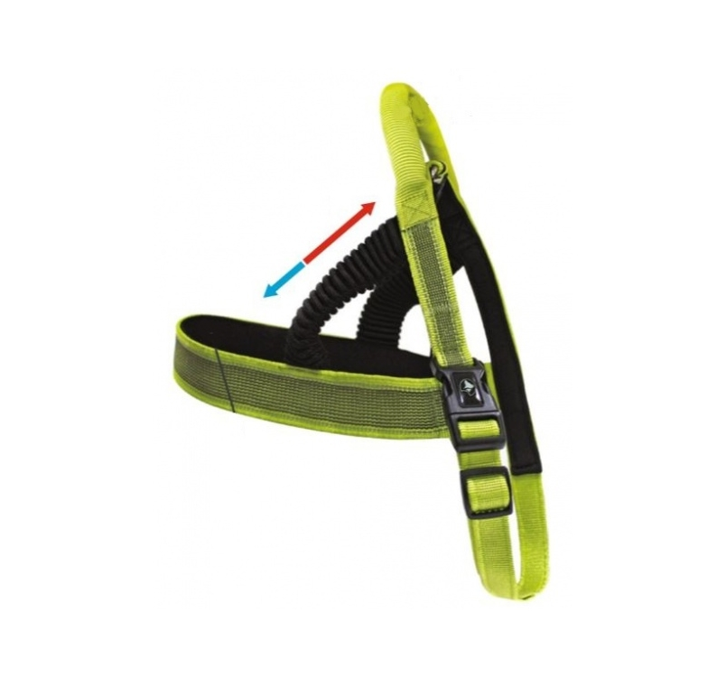 Harness Venture Green 60-71cm 20mm