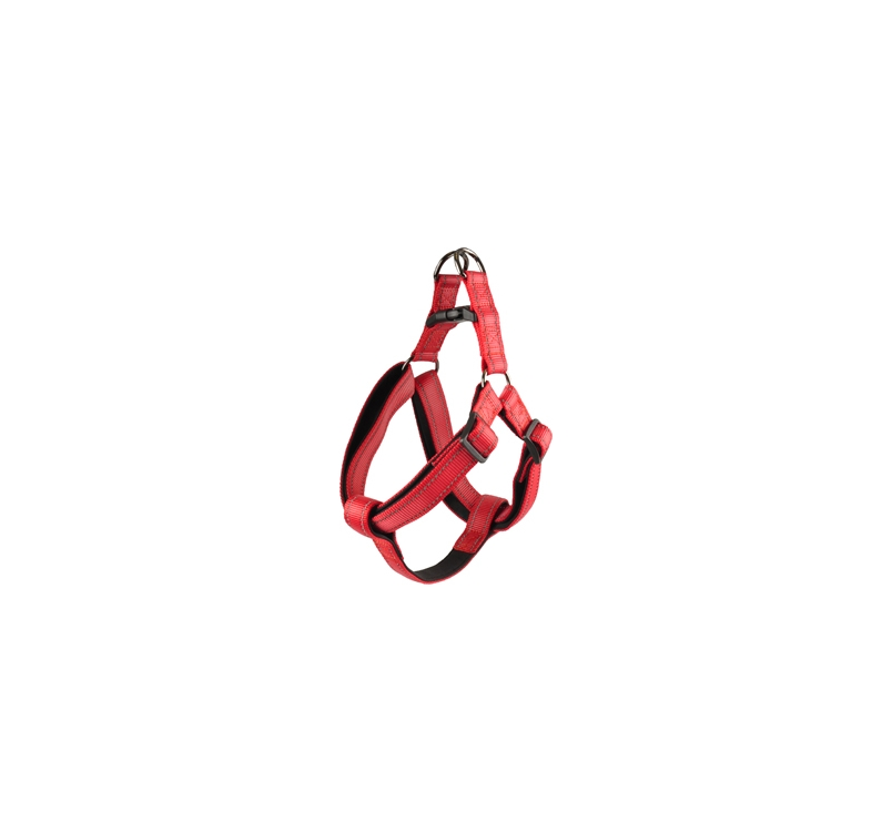 Rover Harness Red 40-70cm 25mm