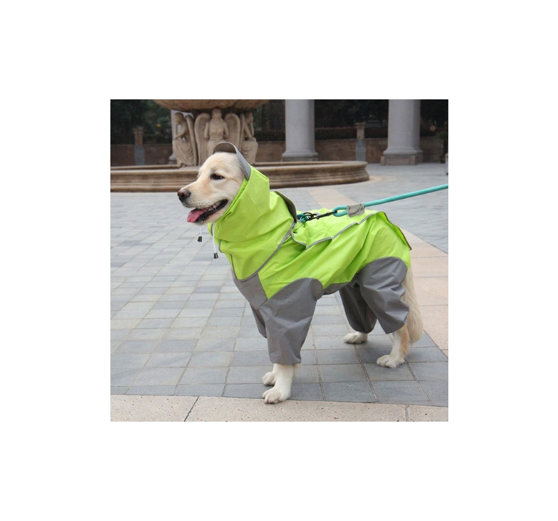 Raincoat for Dogs XXL