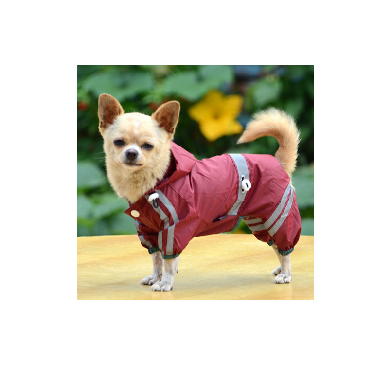 Raincoat for Dogs Red 29cm/M