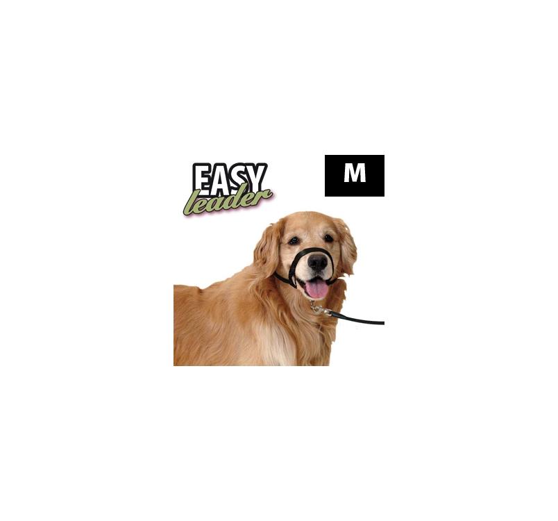 Koonurihm Easy Leader M