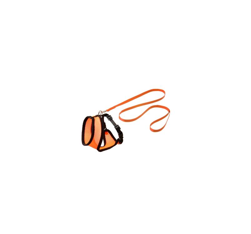 Traksid Suurele Kassile Oranž/Must L + Jalutusrihm 120cm x 15mm