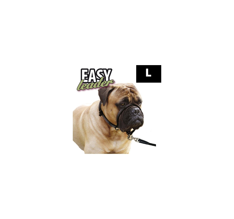 Easy Leader L
