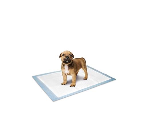 Puppy Training Pads 10pcs 45x60cm