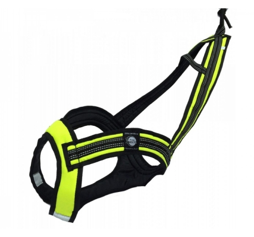 Zero DC Harness Faster M (Different Colors)