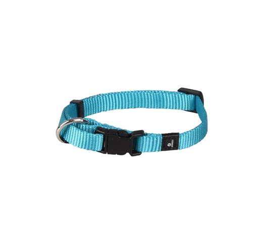 Collar Nylon Turqoise 20-35cm 10mm
