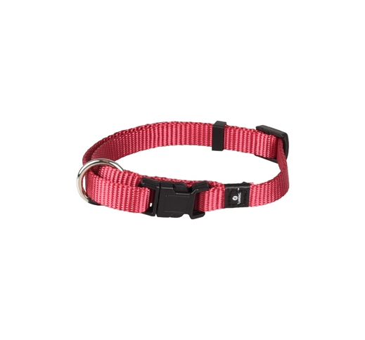Collar Nylon Cherry 20-35cm 10mm
