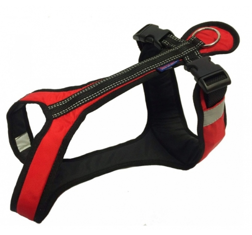Zero Harness Short Medium (Different Colors)