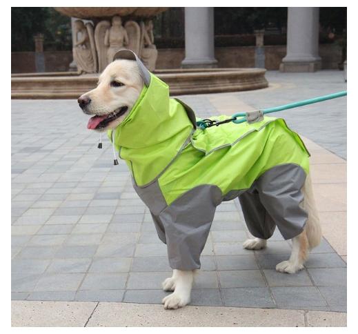 Vihmajope koerale Roheline L