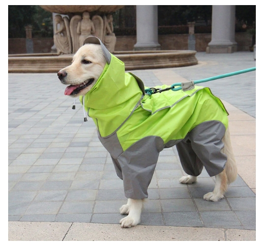 Vihmajope koerale Roheline XL