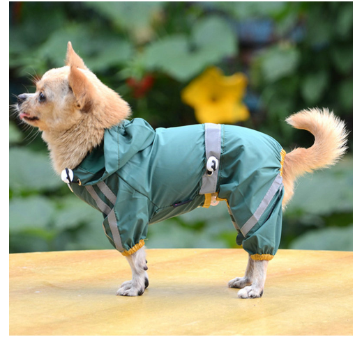 Raincoat for Dogs Green 29cm/M