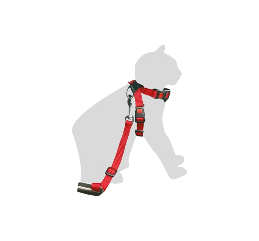 Safety Harness for Cats