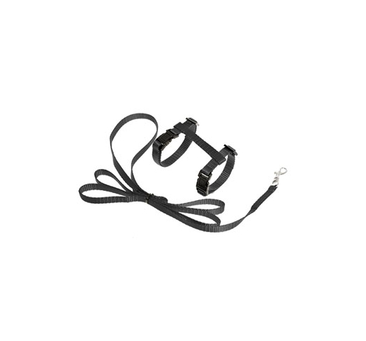 Kitten Harness with Leash Black