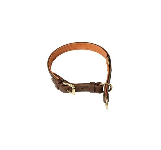 Klin Collar 55cm