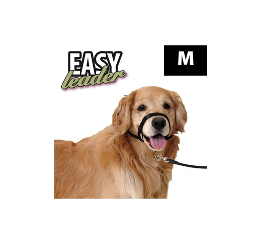 Koonurihm Easy Leader M