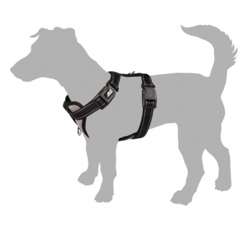 Harness Milou Grey M 40-55cm 20mm