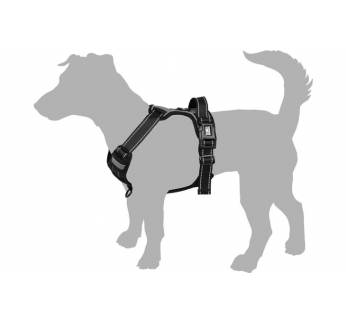 Harness Balou Red L 60-85cm x 25mm