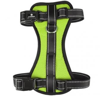 Harness Milou Green M 40-55cm 20mm