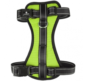 Harness Milou Green XL 60-80cm 25mm