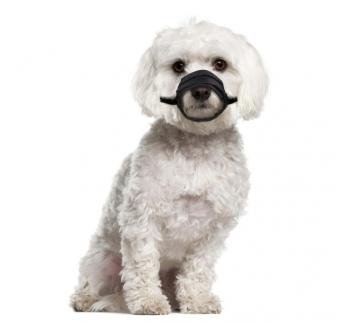 Намордник для собаки, нейлон XS/S