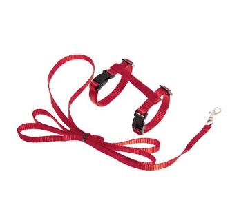 Kitten Harness + Leash Red 120cm