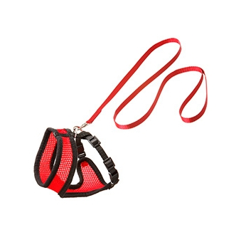 Traksid Kassile Punane/Must M 26-48cm + Jalutusrihm 110cm