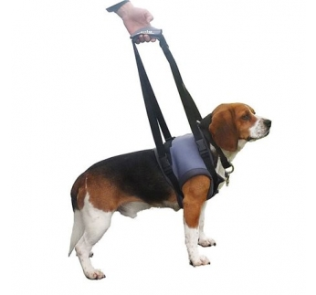 Klin Harness for Sick Dogs S (Front Legs)