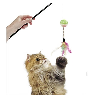 Cat Rod with Ball & Feathers 50cm