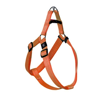 Harness with Reflectors Orange 35-60cm 20mm