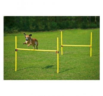 Agility Hurdle Set 2