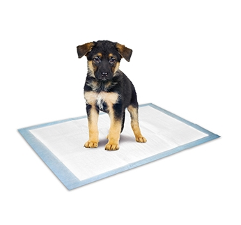 Puppy Training Pads 20pcs 60x45cm